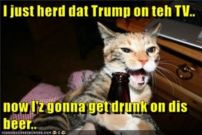 I just herd dat Trump on teh TV..  now I'z gonna get drunk on dis beer..