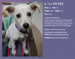 Sweet Woman in India Rescues a Stray Dog, Names Her Eevee, and Creates a Pokemon GO Style Website to Get Her Adopted