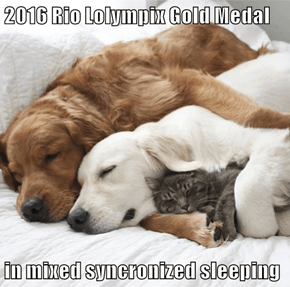 2016 Rio Lolympix Gold Medal  in mixed syncronized sleeping