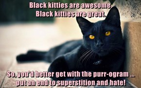 Black kitties are awesome