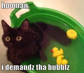 hooman,  i demandz tha bubblz