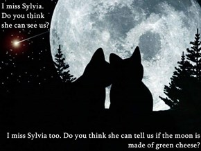 I miss Sylvia.                                                                                         Do you think                                                                                                                           she can see us?