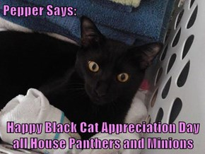 Pepper Says:   Happy Black Cat Appreciation Day all House Panthers and Minions