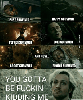 Quicksilver Is Not Entertained