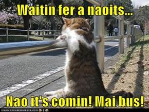Waitin fer a naoits...   Nao it's comin! Mai bus!