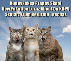 Kuppykakes Preppy Skool                     New Fakultee Lurnz About Da KKPS Skolarz Frum Returnin Teechaz