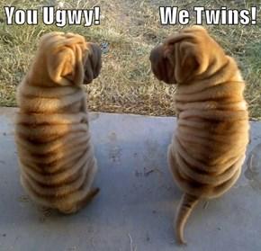 You Ugwy!               We Twins!