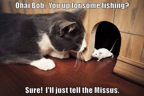 Ohai Bob.  You up for some fishing?  Sure!  I'll just tell the Missus.