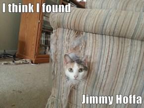 I think I found  Jimmy Hoffa