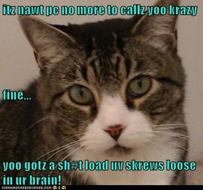 itz nawt pc no more to callz yoo krazy fine... yoo gotz a sh#t load uv skrews loose in ur brain!