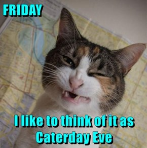 FRIDAY  I like to think of it as                   Caterday Eve