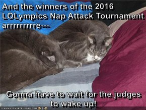 And the winners of the 2016 LOLympics Nap Attack Tournament arrrrrrrrre---  Gonna have to wait for the judges to wake up!