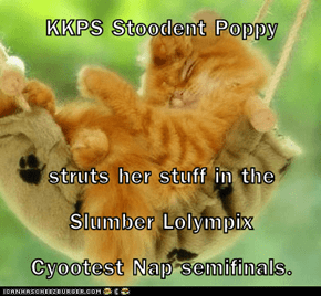 KKPS Stoodent Poppy  struts her stuff in the Slumber Lolympix                 Cyootest Nap semifinals.