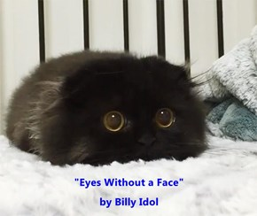 """Eyes Without a Face""                                                                                                        by Billy Idol"