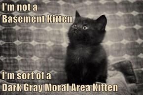 I'm not a                                                                     Basement Kitten  I'm sort of a                                                                Dark Gray Moral Area Kitten