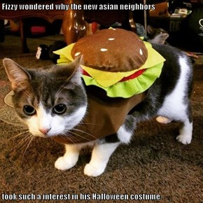Fizzy wondered why the new asian neighbors  took such a interest in his Halloween costume.