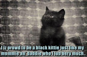 I iz prowd to be a black kittie just like my mommie an' daddie who I lub bery much..