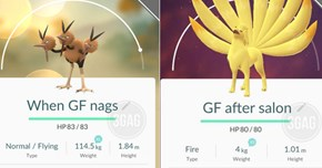 Dude Pairs His Pokémon GO Collection With Fitting Names for His Girlfriend
