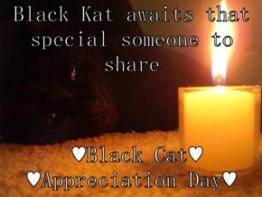 Black Kat awaits that special someone to share   ♥Black Cat♥                                        ♥Appreciation Day♥