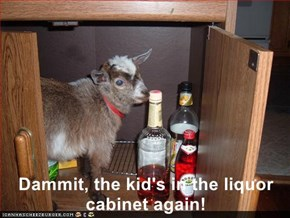 Dammit, the kid's in the liquor cabinet again!