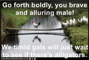 Go forth boldly, you brave and alluring male!  We timid gals will just wait to see if there's alligators.