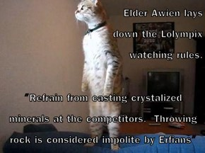 "Elder Awien lays                                                                     down the Lolympix                           watching rules.  ""Refrain from casting crystalized minerals at the competitors.  Throwing rock is considered impolite by Erfia"