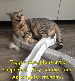 Tigger was pleasantly surprised. Toy racing cars were quite crunchy.