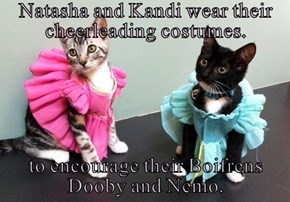Natasha and Kandi wear their cheerleading costumes.  to encourage their Boifrens Dooby and Nemo.