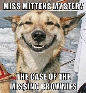 MISS MITTENS MYSTERY   THE CASE OF THE MISSING BROWNIES