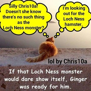 Or Elliot Ness? (Chris10a's lol: http://cheezburger.com/8970679808