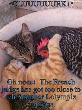 """CLUUUUUURK!""  Oh noes!  The French judge has got too close to teh Slumber Lolympix naplets!"