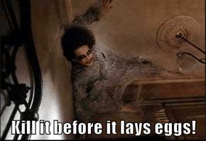 Kill it before it lays eggs!
