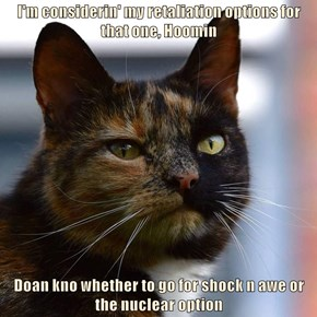 I'm considerin' my retaliation options for that one, Hoomin  Doan kno whether to go for shock n awe or the nuclear option