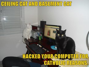 CEILING CAT AND BASEMENT CAT  HACKED YOUR COMPUTER FOR CATHOLIC REASONS.