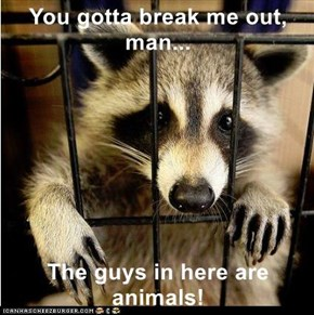 You gotta break me out, man...  The guys in here are animals!