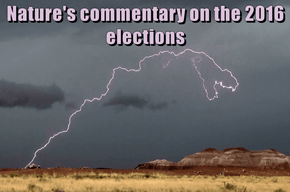 Nature's commentary on the 2016 elections