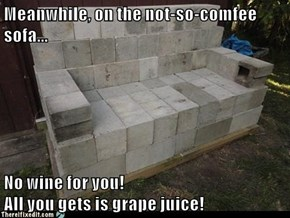 Meanwhile, on the not-so-comfee sofa...  No wine for you!                                                  All you gets is grape juice!