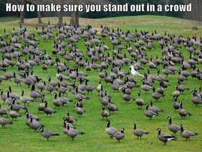How to make sure you stand out in a crowd
