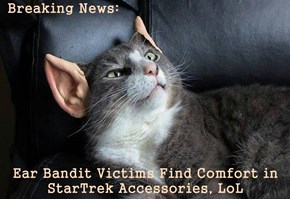 Breaking News:  Ear Bandit Victims Find Comfort in StarTrek Accessories, LoL