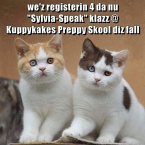 "we'z registerin 4 da nu                                                             ""Sylvia-Speak"" klazz @ Kuppykakes Preppy Skool diz fall"