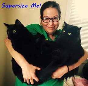 Supersize Me!