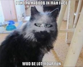 I THOT A HABOOB IN MAH FACE  WUD BE LOT MOAR FUN