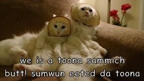 we is a toona sammich           butt! sumwun eeted da toona