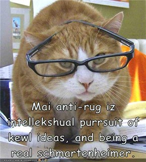 Mai anti-rug iz intellekshual purrsuit of kewl ideas, and being a real schmartenheimer.