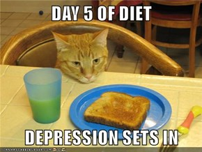 DAY 5 OF DIET  DEPRESSION SETS IN