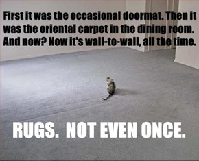 Rugs. Not even once.