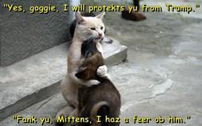 """""""Yes, goggie, I will protekts yu from Trump.""""  """"Fank yu, Mittens, I haz a feer ob him."""""""