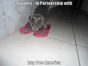 Slippers - In Partnership with   Rug Free America