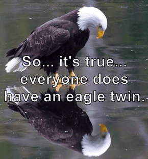 So... it's true... everyone does have an eagle twin.