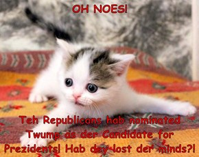 OH NOES!  Teh Republicans hab nominated Twump as der Candidate for Prezidents! Hab dey lost der minds?!